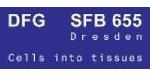 sfb655